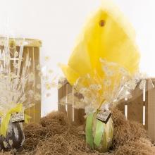 ANTICA DOLCERIA RIZZA Uova di Pasqua